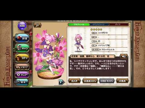 Flower Knight Girl – Date with Moss Phlox (old)